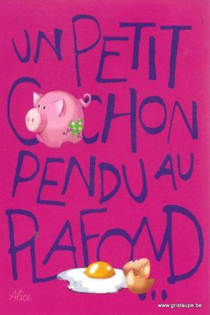 carte postale illustrée par alice nominé et éditée aux éditions gulf stream un petit cochon
