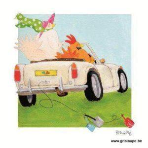 carte postale illustrée par pascaline et éditée aux éditions coté bord'eau en voiture cocotte
