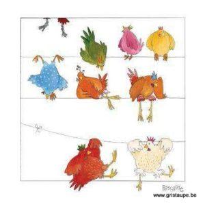 carte postale illustrée par pascaline et éditée aux éditions coté bord'eau quelques poules sur un fil