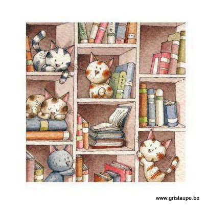 carte postale illustrée par virginie cachau et éditée aux éditions coté bord'eau chats de bibliothèque