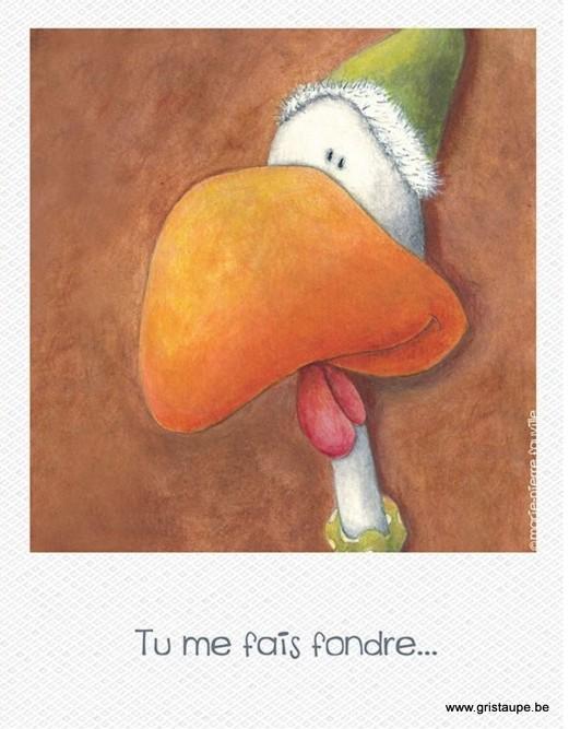 carte postale illustrée par marie pierre fauville et éditée aux éditions de cortil tu me fais fondre