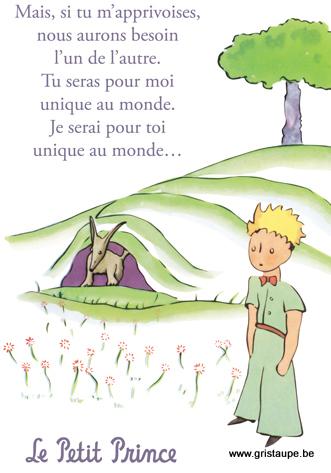 carte postale illustrée par saint exupéry et éditée aux éditions kiub tu seras unique pour :oi