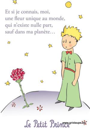 carte postale illustréée par saint exupéry et éditée aux éditions kiub le petit prince une fleur uique au monde