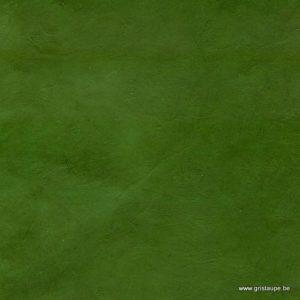 papier main lamali lokta fin vert cactus