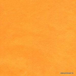 papier fabriqué à la main lamali lokta fin moutarde