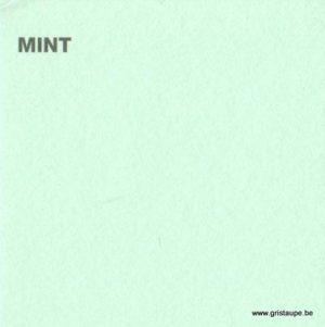 papier canford de loisir créatif de couleur menthe