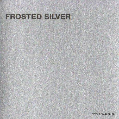 papier canford loisir créatif de couleur argentée