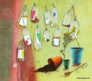 carte postale illustrée par gaelle boissonnard et éditée aux éditions aquarupella les sachets de graines