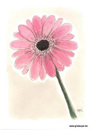 carte illustrée par sari et représentant une fleur rose