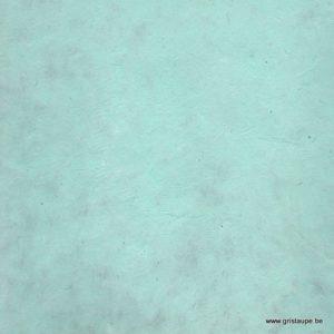 papier lokta fin fabriqué à la main au népal couleur vert d'eau