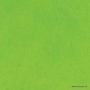 papier lokta fin fabriqué à la main au népal couleur vert lime