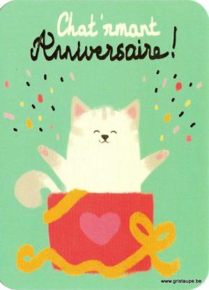 Carte d'anniversaire humoristique de Camille Chaussy représentant un chat dans un cadeau