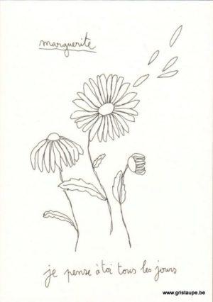 carte postale double illustrée par papillonnage et représentant une marguerite