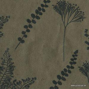 papier de lokta fabriqué à la main au Népal botanique lichen