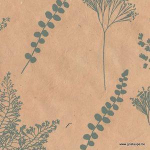 papier de lokta fabriqué à la main au népal botanique peau