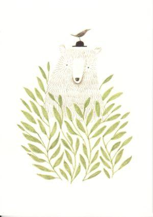 carte postale illustrée et éditée par aline tekent représentant un ours derrière une plante verte